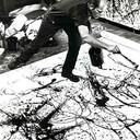 Jackson Pollock 16