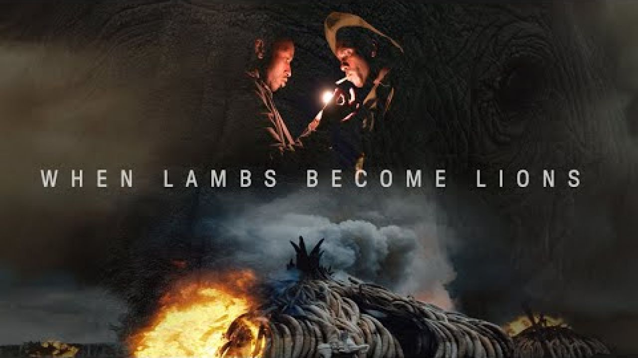 When Lambs Become Lions - Official Trailer - Oscilloscope Laboratories HD